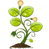 Plant with light bulbs and plug Stock Images