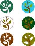 Plant logos Stock Photo
