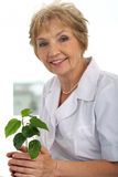 Plant lover Stock Image