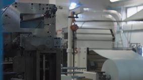 Plant machinery for paper products manufacturing. Punching or cutting machine. Process. Production of disposable utensils from environmentally friendly stock footage