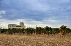 Plant for making wine and jamon in Olite. Royalty Free Stock Images
