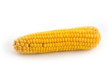 Plant meal yellow corn. Cleared ear on white background Stock Photo