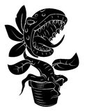 Plant Monster Stock Photo