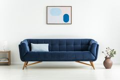 Plant next to blue settee with cushion in white minimal living room interior with poster. Real photo. Concept royalty free stock image