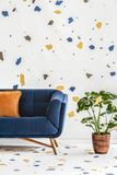Plant next to blue sofa with orange pillow in colorful living room interior with wallpaper. Real photo. Concept stock photography