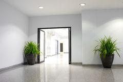 Plant in office building Stock Photography