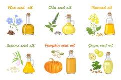 Set of vegetable oils in glass bottles of different shapes. royalty free illustration