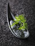 Plant oil with dill branches on a background of black sesame. Plant oil in small bowl with dill branches on a background of black sesame stock image