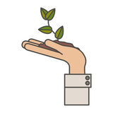 Plant over hand design. Plant over hand icon. Gardening nature green and home theme. Isolated design. Vector illustration Royalty Free Stock Photo