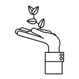 Plant over hand design Stock Images