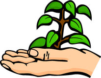 Plant in palm of hand. Illustration of a plant in the palm of a hand Stock Photos