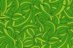 Plant pattern Stock Photos