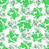 Plant pattern Royalty Free Stock Photos