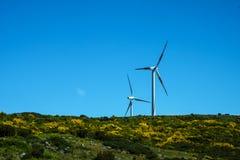 Plant platåområde med vindturbiner i bergen i norden av ön av madeiran Royaltyfri Fotografi