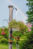 Plant Post and Rainbow Stock Image
