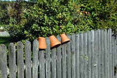 Plant pot Royalty Free Stock Photos