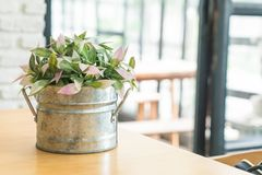 Plant in pot decoration. On dinning table royalty free stock photos