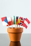 Plant pot with different flags Royalty Free Stock Photo