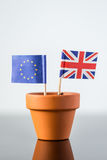 Plant pot with european and british flag Stock Photo
