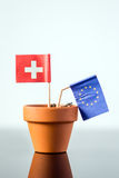 Plant pot with european and swiss flag Stock Photos