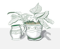 Plant. Pot with a flower and a pitcher are on the table Stock Photo