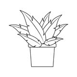 Plant in a pot icon Stock Photo