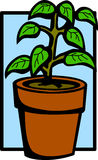 Plant in a pot vector illustration Royalty Free Stock Images