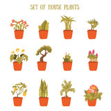 Plant in a pot vector set, decorative element for home decor. Isolated plant collection. Stock Images
