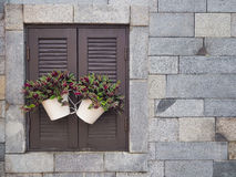 Plant in pot on wood window. With brick background stock photos