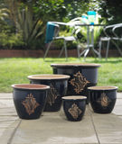 Plant pots Royalty Free Stock Photo
