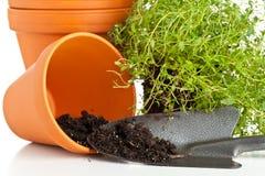 Free Plant Pots Stock Photo - 34256640