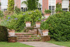Plant Pots and the Garden Steps Stock Photo