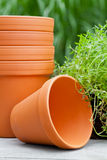 Plant pots Stock Photos