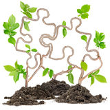 Plant puzzle Stock Photography