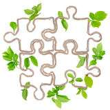 Plant puzzle Royalty Free Stock Photos