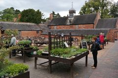 Plant sale courtyard. Courtyard of country house people looking through plants for sale old buildings and trees surround Stock Images