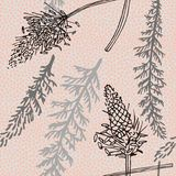 Plant seamless pattern with yarrow plant and ribwort Stock Photography
