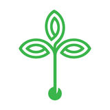 Plant with seed and green leaves logo icon design. Flat design logo icon with the concept of leaves and seed Royalty Free Stock Image