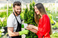 Plant seller with buyer in the shop Stock Photo