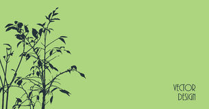 Plant silhouette background Royalty Free Stock Images