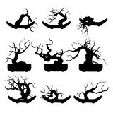 Plant silhouette icons, tree and branches silhouette, detailed vector illustration. vector illustration