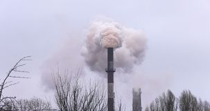 Plant. Smoke from the pipe. Air pollution. Dense white smoke from the factory chimney.Pipe factory with thick smoke through the trees stock video footage