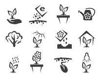 Plant and sprout growing vector icons set Royalty Free Stock Photos
