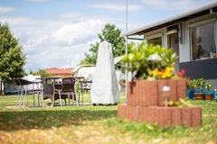 Plant stone with flowers in a campsite stock images
