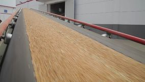 Plant for storage and processing of grain stock video footage