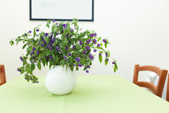 Plant on table Stock Photo