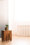 Plant, table and pallet. Plant, wooden table and pallet in room with big window Royalty Free Stock Photo