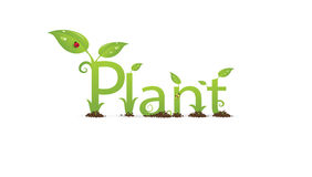 Plant text Stock Images