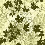 Plant tile. Editable vector seamless tile of tangled plants Royalty Free Stock Images