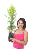 Plant a tree Stock Photo
